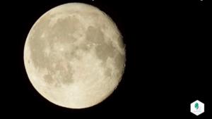 Lune flaccomio